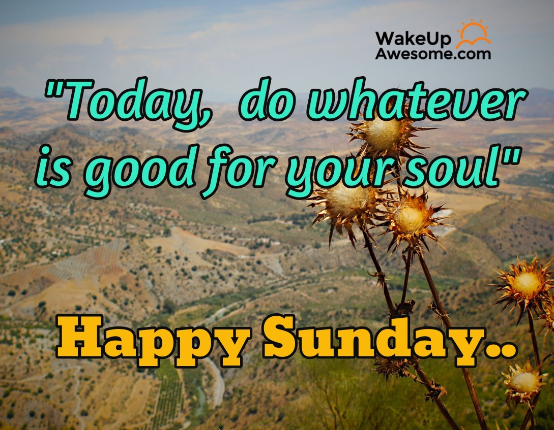 Sunday Quotes Images Sunday Quotespic Messages To Wish Your Loved Ones An Awesome Sunday